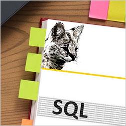 Neue SQL-Seminare