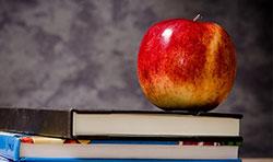 Bildungsprämie vom Staat
